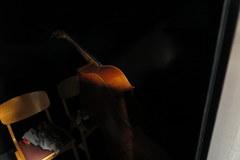 Filharmonia Szczecińska: Miejscem, do którego melomani wstępu nie mają są też kulisy
