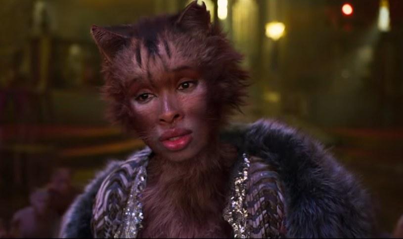 """Film """"Cats"""" otrzyma... patcha /YouTube"""