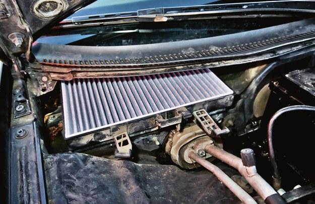 filtr kabinowy /Motor