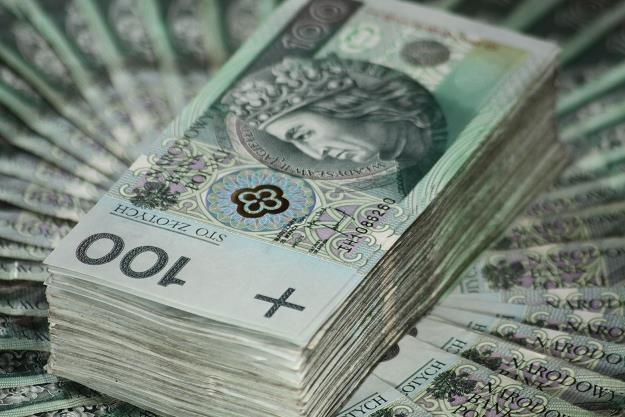 Finansowe wsparcie dla polskich uczelni /©123RF/PICSEL