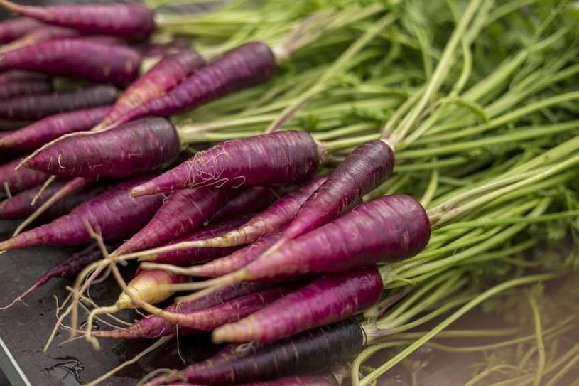 fioletowe warzywa /© Photogenica