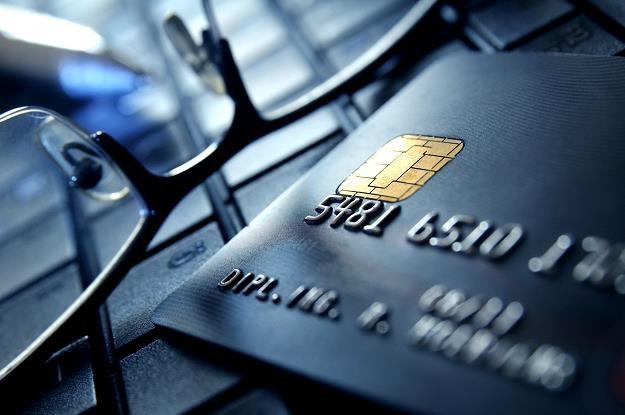 Firma Visa Inc. bada przyczyny kłopotów z płaceniem kartami w Europie /Informacja prasowa