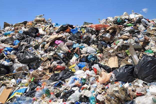 Firmy chcą zarabiac na przeróbce odpadów /©123RF/PICSEL