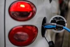 Firmy liczą i wychodzi im, że… wybierają auta spalinowe