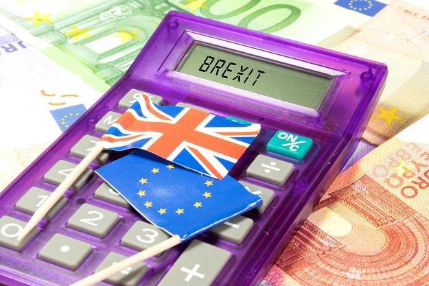 Firmy obawiają się twardego brexitu /©123RF/PICSEL