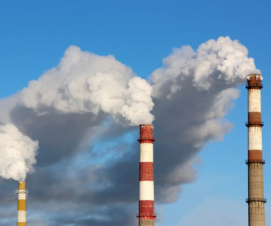 Firmy obiecują zerowe emisje CO2. Jak to osiągną?