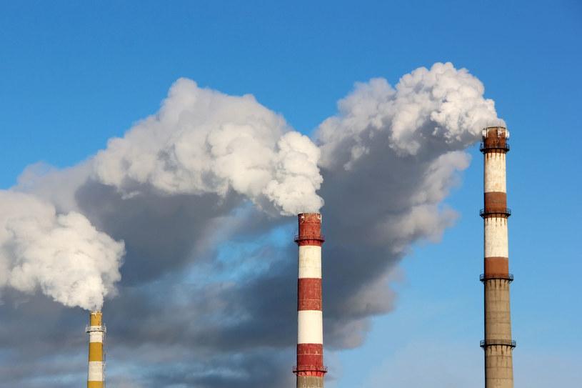 Firmy obiecują zerowe emisje CO2. /123RF/PICSEL