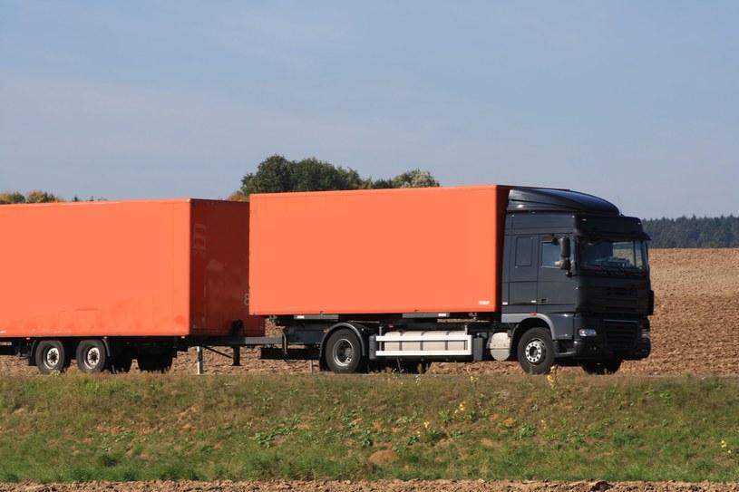 Firmy przewozowe są zagrożone unijnymi przepisami o delegowaniu pracowników /123RF/PICSEL