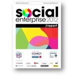 Firmy w sieciach społecznościowych - Raport Social Enterprise 2012