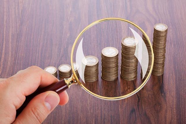 Fiskus nie może opodatkować dochodu, dopóki nie ustali, że pochodzi on z legalnych źródeł /©123RF/PICSEL