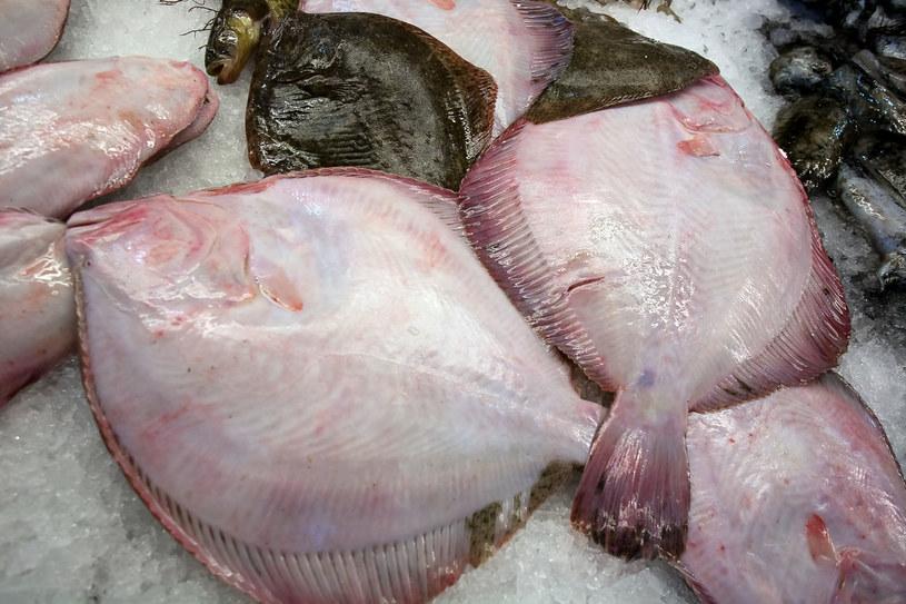 Flądra to jedna z najpopularniejszych polskich ryb /123RF/PICSEL