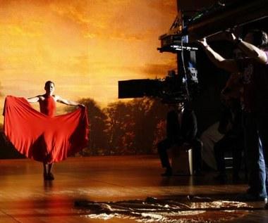 """""""Flamenco, Flamenco"""""""