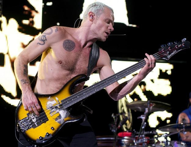 Flea, szalony basista Red Hot Chili Peppers - fot. Juan Naharro Gimenez /Getty Images/Flash Press Media