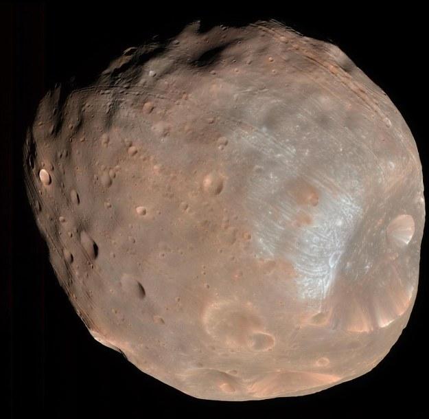 Fobos sfotografowany w  marcu 2008 roku z pomocą kamery HiRISE (High Resolution Imaging Science Experiment) sondy Mars Reconnaissance Orbiter /NASA/JPL-Caltech/University of Arizona /Materiały prasowe