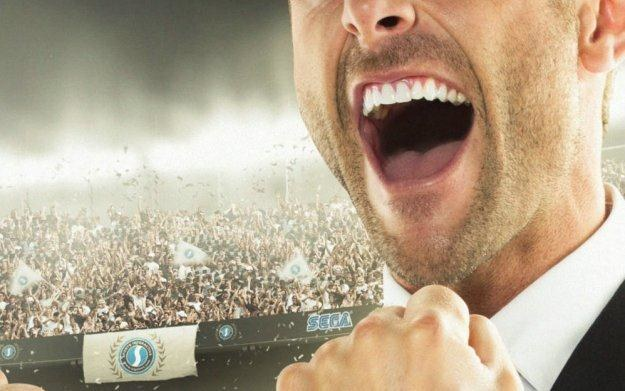 Football Manager 2013 - motyw graficzny /