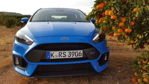 Ford Focus RS - najostrzejszy z Fordów