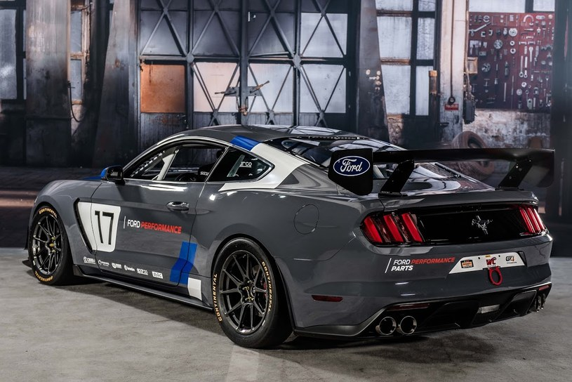 Ford Mustang GT4 /