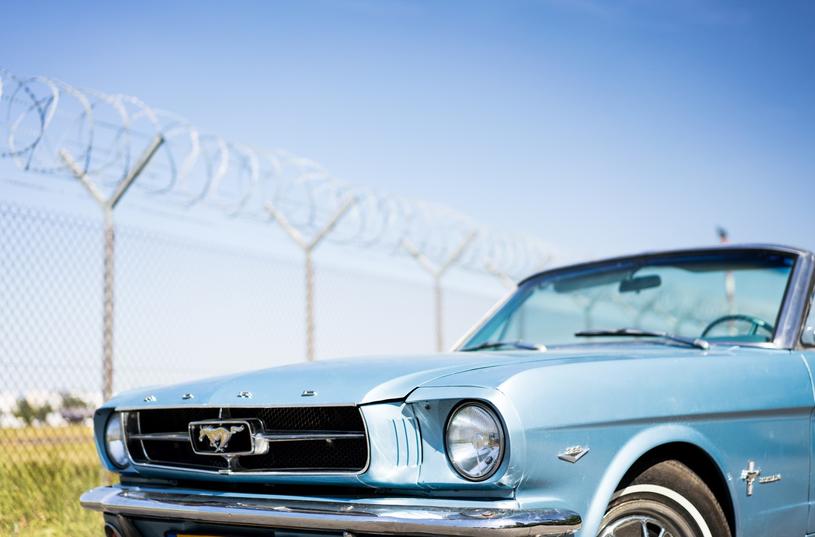 Ford Mustang, który trafi pod młotek wyposażony jest w potężny silnik V8 /materiały prasowe