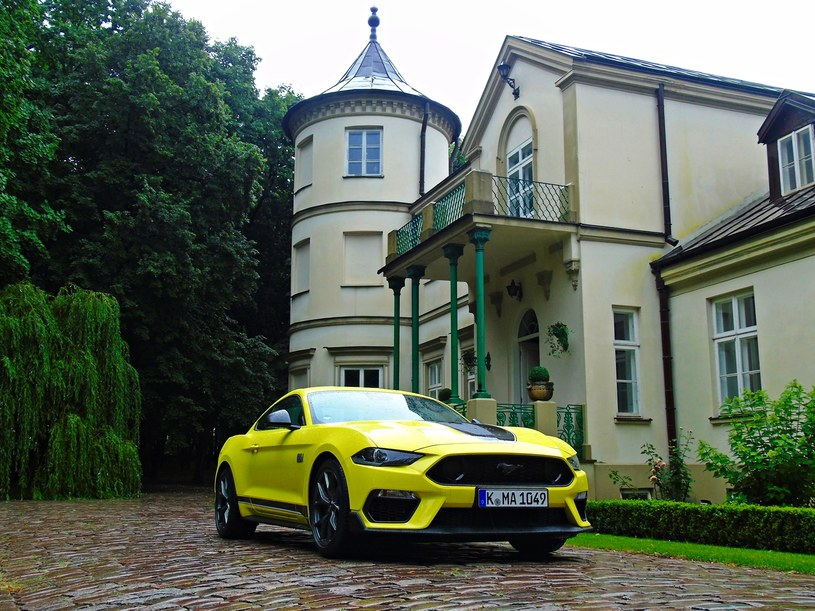 Ford Mustang Mach 1 /INTERIA.PL