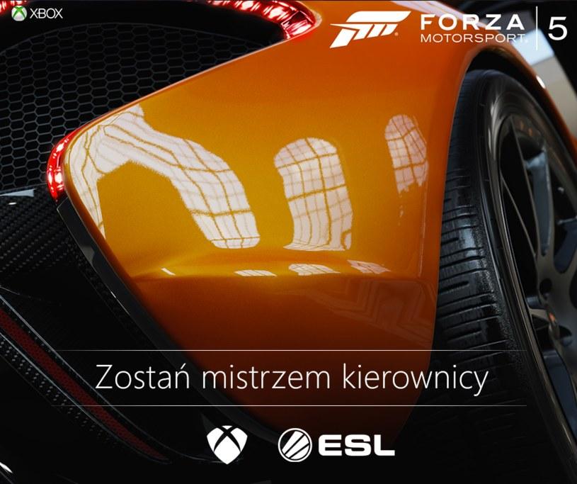 Forza Motorsport /materiały prasowe