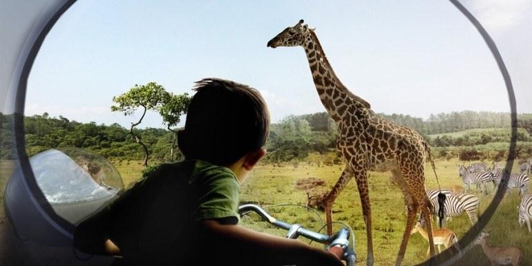 randkowe safari komunikacja randkowa