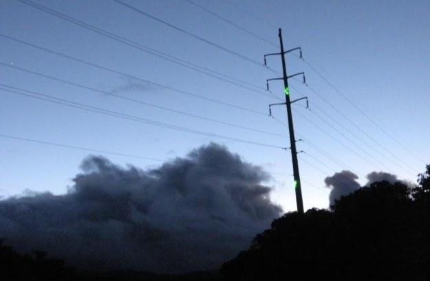 Fot. kauai.coopwebbuilder.com /materiały prasowe