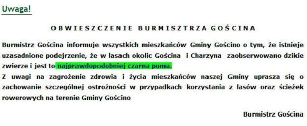puma oficjalna strona polska