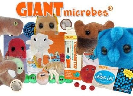 fot. www.giantmicrobes.com /Kopalnia Wiedzy