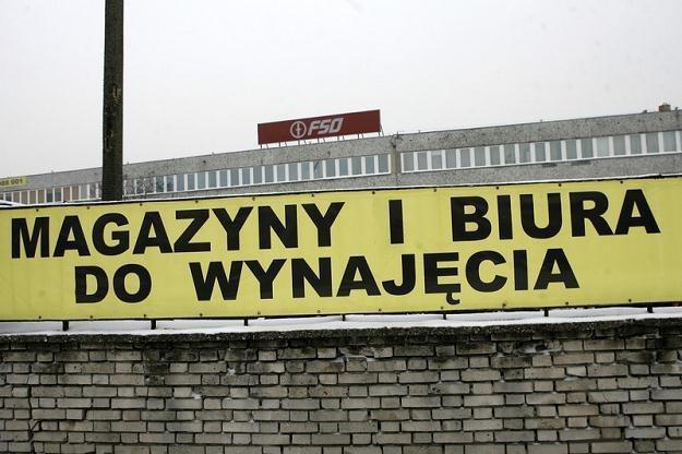 Fot: Zbyszek Kaczmarek /East News