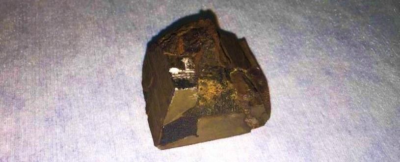 Fragment meteorytu Mundrabilla /materiały prasowe