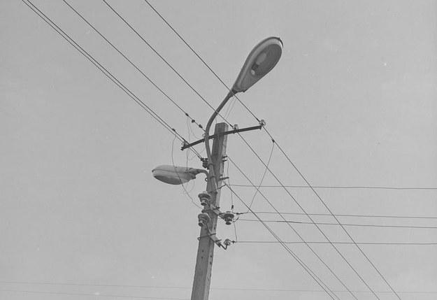 Fragment sieci energetycznej we wsi Branków. Na słupie lampy oświetleniowe /Z archiwum Narodowego Archiwum Cyfrowego