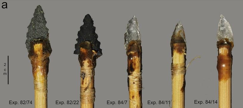Fragmenty broni znalezione w jaskini Sibudu /fot. PLOS ONE /materiały prasowe
