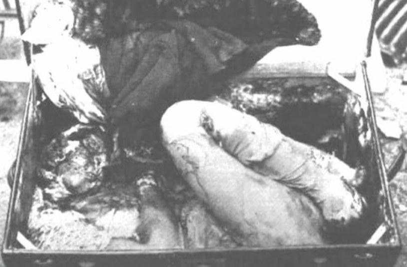 Fragmenty ciał znalezione w mieszkaniu Geina. Obecnie znajdują się w muzeum /Getty Images/Flash Press Media
