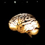 Francja: Nadzieja w leczeniu Parkinsona