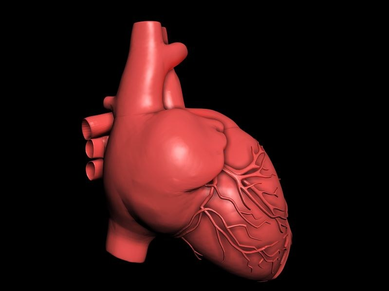 Francuscy kardiochirurdzy po raz pierwszy na świecie wymienili zastawkę aorty metodą endoskopową. /123RF/PICSEL