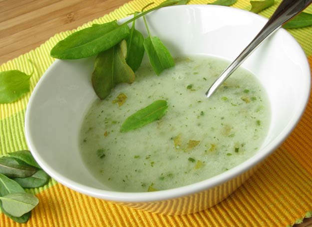 Francuska zupa z młodego szczawiu /123RF/PICSEL