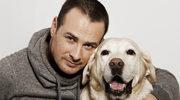Franek pomagał innym psom, teraz sam potrzebuje pomocy!