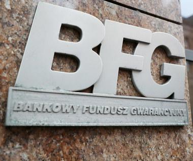 Franki to największe ryzyko sektora - prezes BFG