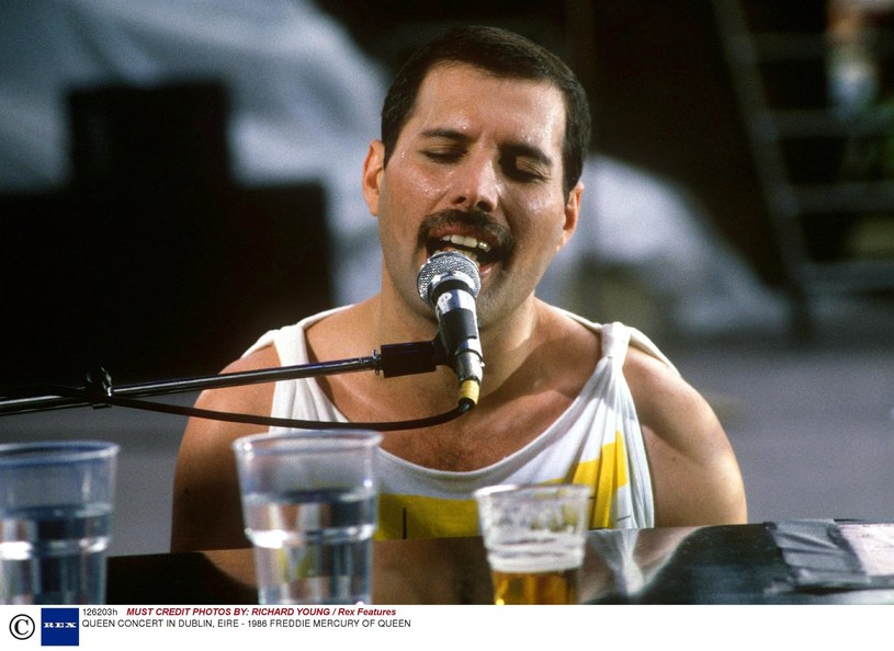 Freddie Mercury w 1986 roku /RICHARD YOUNG / Rex Features /East News