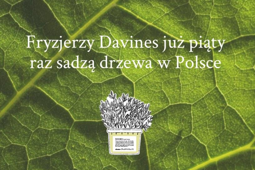 Fryzjerzy Davines sadzą drzewa w trosce o zielone płuca Polski /INTERIA.PL/materiały prasowe