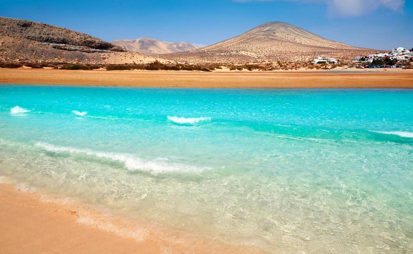 Fuerteventura /123RF/PICSEL