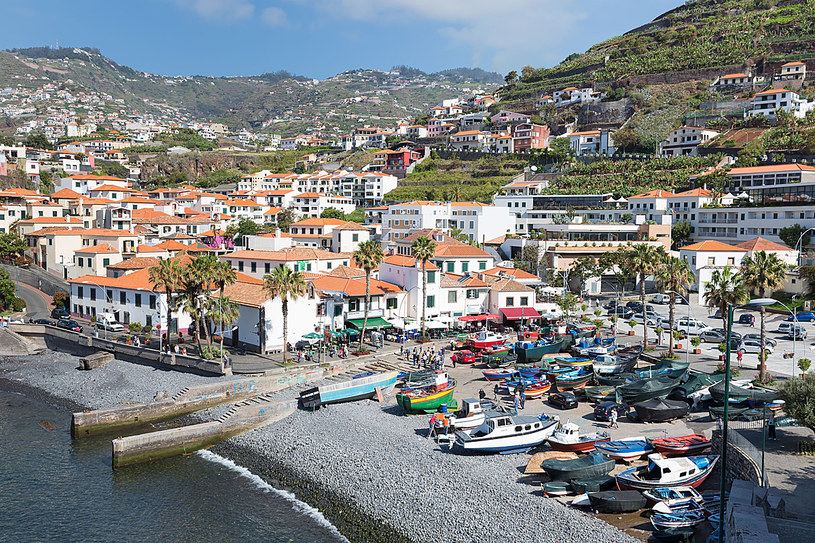 Funchal - stolica Madery /123RF/PICSEL