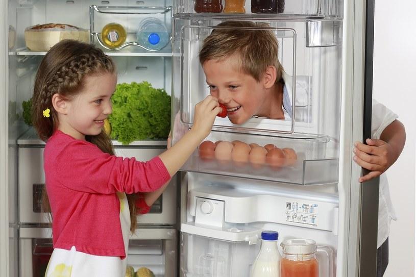 Funkcja Door-in-Door (Minibar) jest bardzo przydatna, zwłaszcza podczas domowych imprez /materiały prasowe