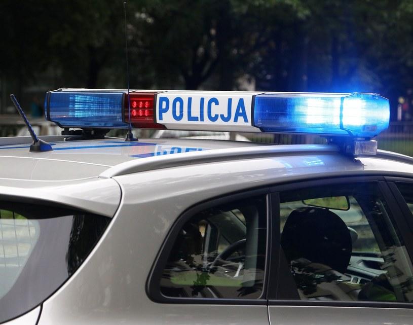 Funkcjonariusze musieli użyć broni (zdjęcie ilustracyjne) /Mariusz Grzelak /Reporter