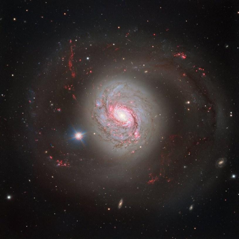 Galaktyka Messier 77 /materiały prasowe
