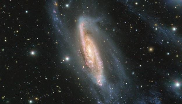 Galaktyka NGC 3981 /ESO /Materiały prasowe