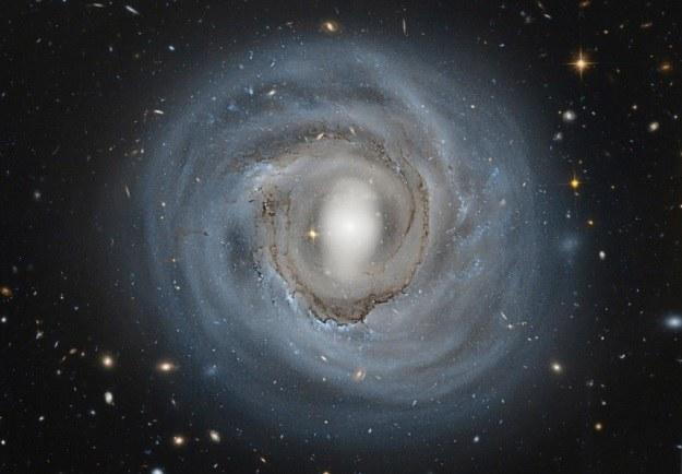 Galaktyka NGC 4921 /NASA
