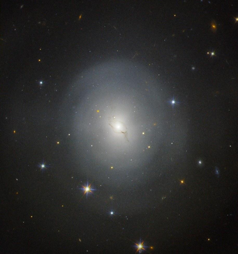 Galaktyka NGC 4993 w obiektywie teleskopu Hubble'a /NASA, ESA  /Materiały prasowe