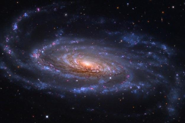 Galaktyka spiralna NGC 5033 /NASA