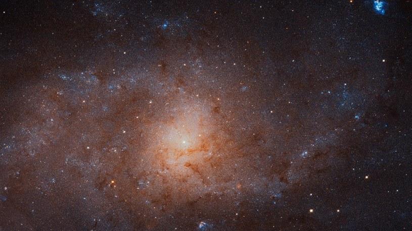 Galaktyka Trójkąta w spektakularnej rozdzielczości /NASA